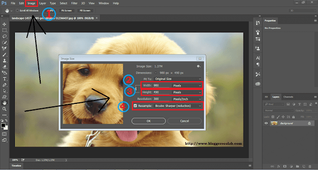How To Reduce Image Size Without Losing Quality.