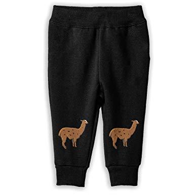 Amazon.com: Llama Clipart Pantalones para niños y niños.