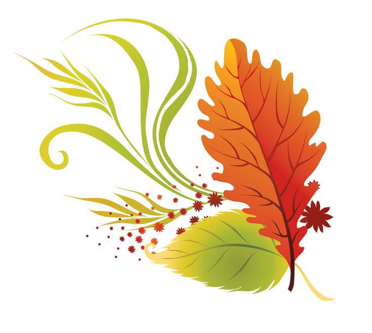 1000+ ideas about Fall Leaves Images on Pinterest.