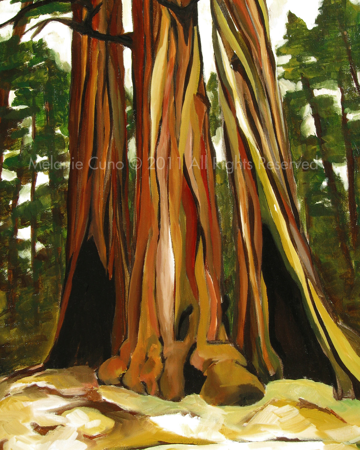Redwood Trees giclee print of original acrylic painting.