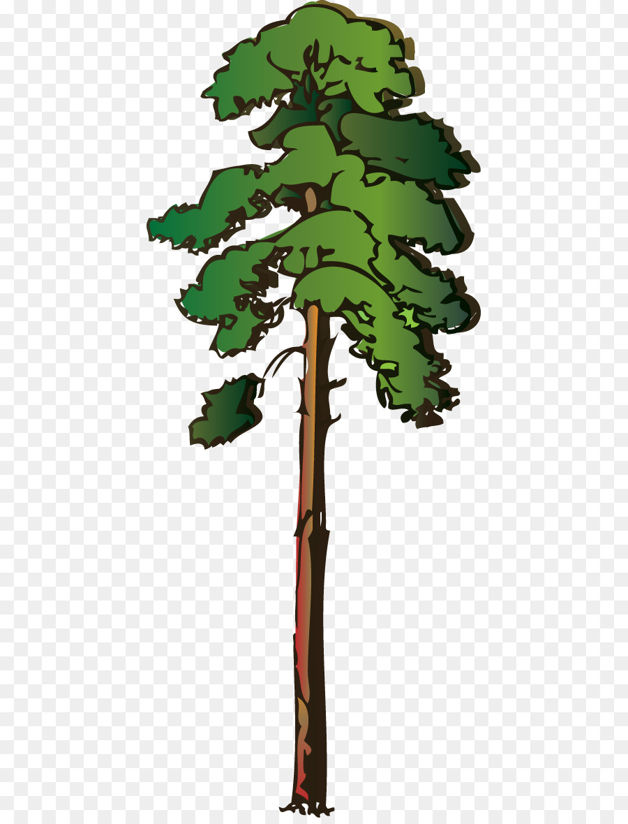 Redwood tree clipart 4 » Clipart Station.