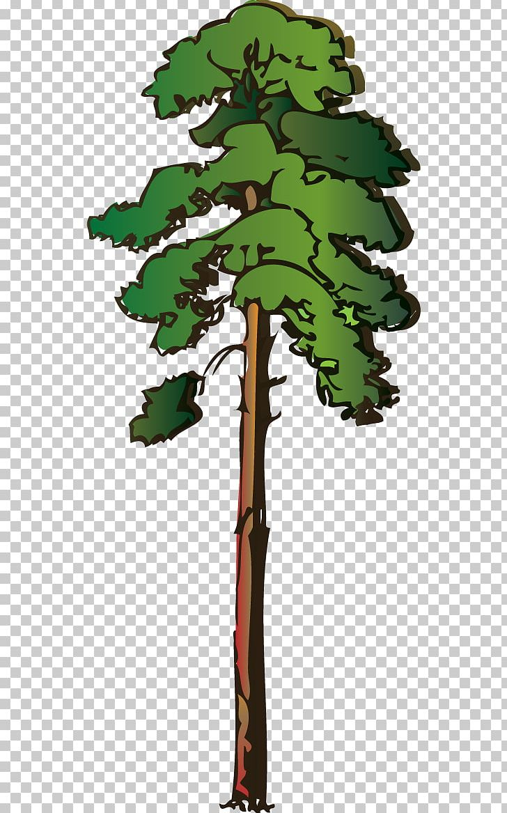 Tree Redwoods Giant Sequoia PNG, Clipart, Branch, Clip Art.