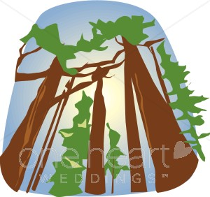 redwood forest clipart #12