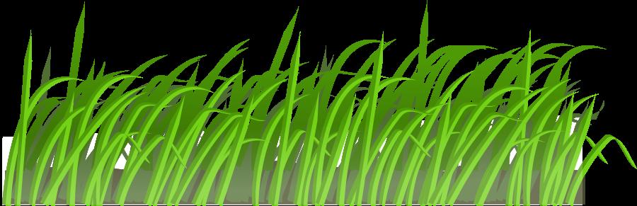 Reeds clipart.