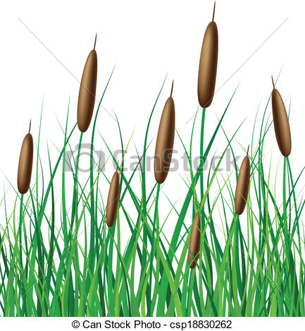 Clip Art Vector of Vector reed with grass for lakes and rivers.