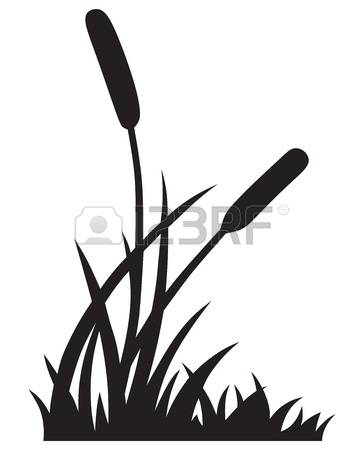 3,547 Reeds Stock Illustrations, Cliparts And Royalty Free Reeds.
