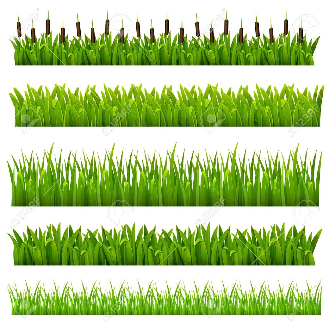Reed Frame Stock Photos Images. Royalty Free Reed Frame Images And.