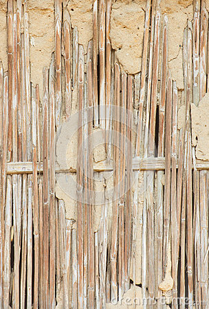 Dry Reed Wall Stock Photo.