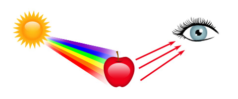 How are color and light related?.