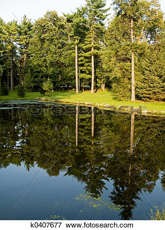 Picture of Reflecting Pond k0407677.
