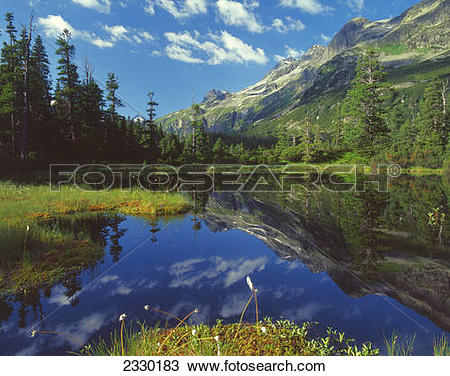 Stock Photo of Reflection of mountain and trees in water.
