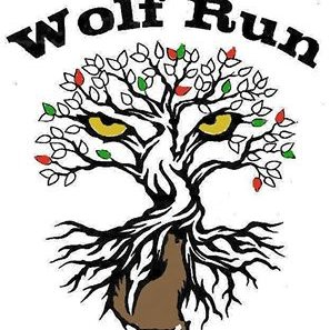 Tweets with replies by WOLF RUN Refuge (@WOLFRUNcharity).