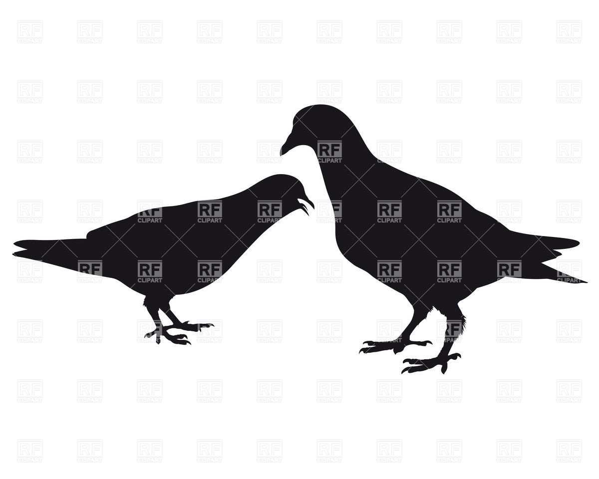 Silhouette of two pigeons Vector Image #26317.