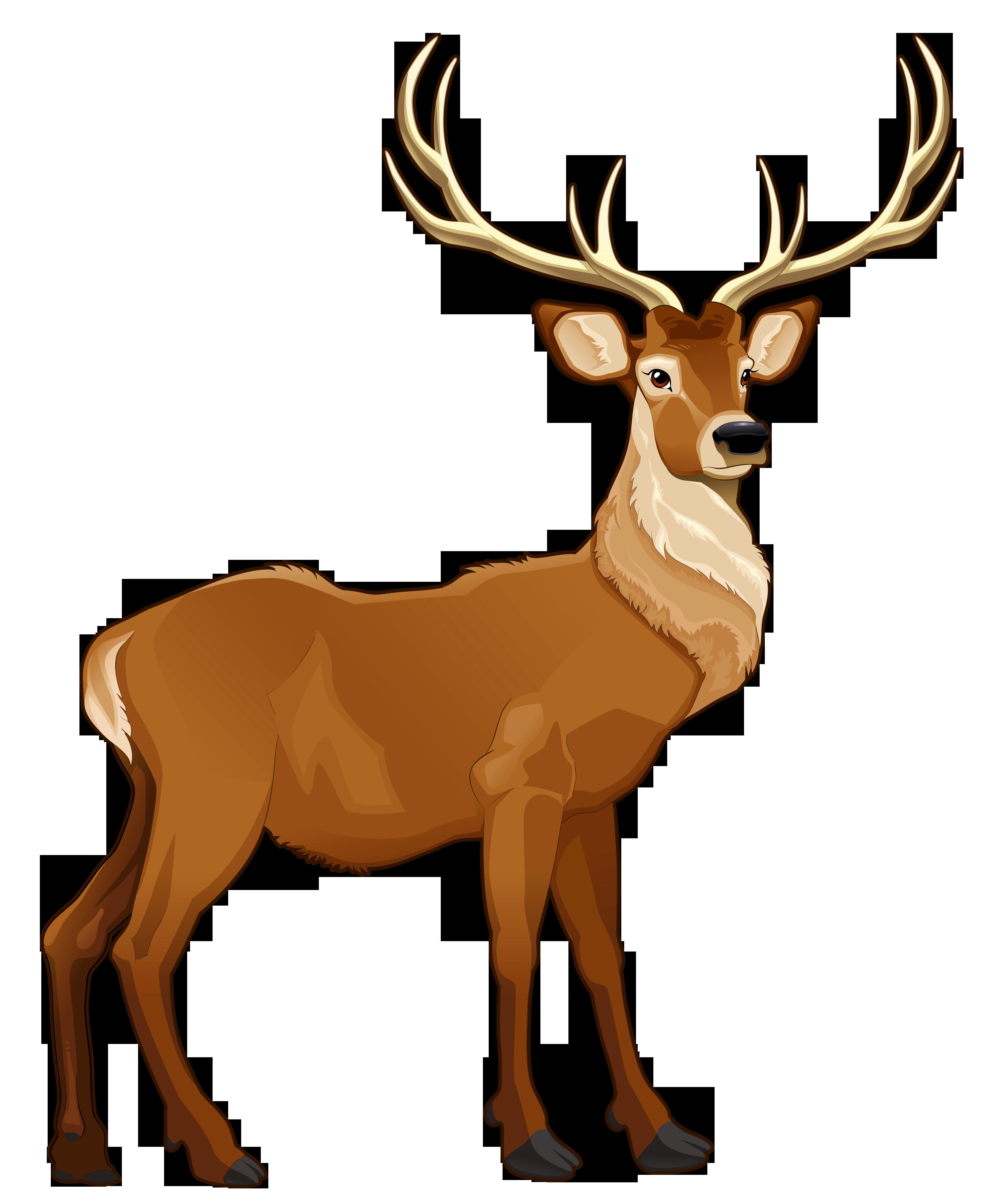 Best Reindeer Clipart #22128.