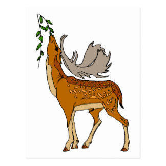 Cartoon Pictures Of Deer.