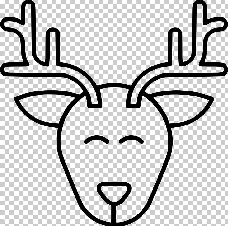 Reindeer Drawing PNG, Clipart, Animal, Animals, Antler.
