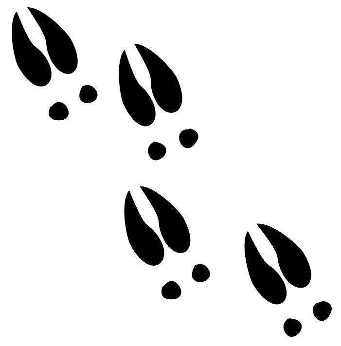 Free Deer Footprints Cliparts, Download Free Clip Art, Free.