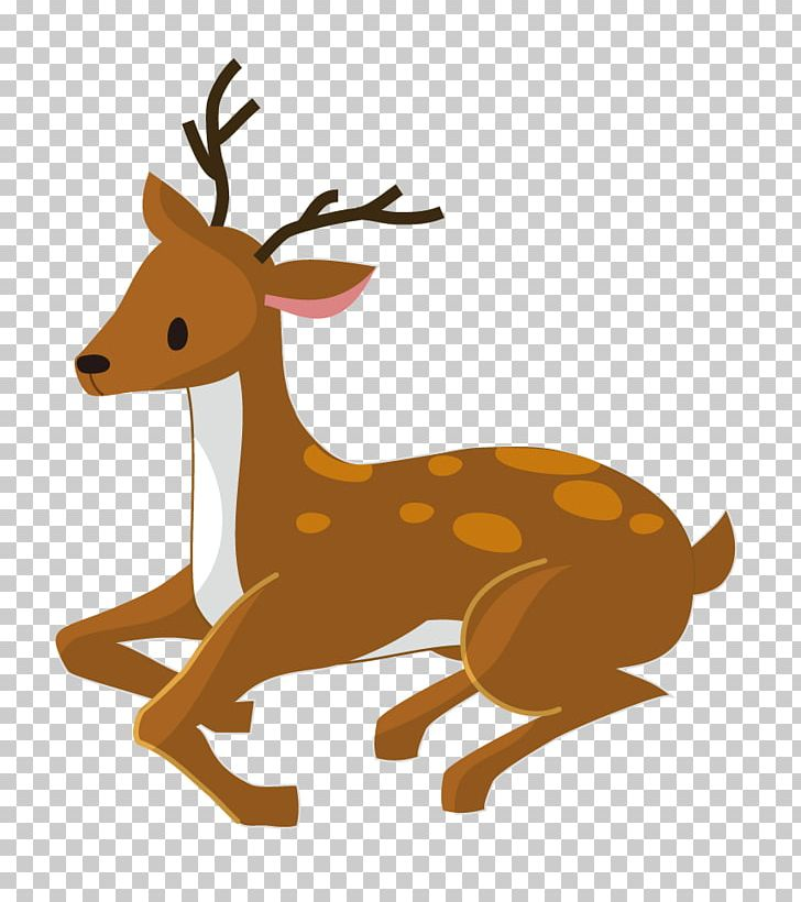 Reindeer Antler Wildlife Tail PNG, Clipart, Antler, Cartoon.