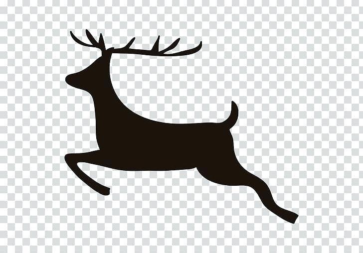 reindeer tail.