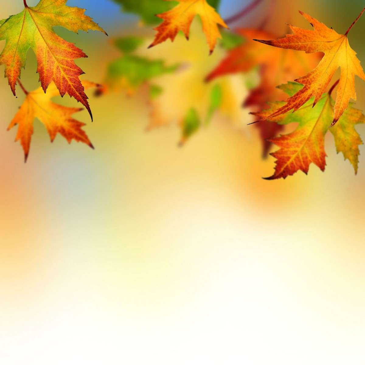 Free Religious Autumn Cliparts, Download Free Clip Art, Free.