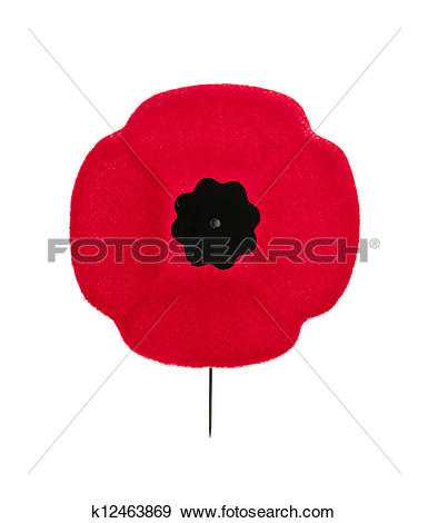 Stock Photograph of Remembrance Day poppy k12463869.