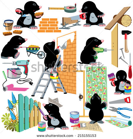 Set With Cartoon Mole Working Home Renovation Works, Isolated.