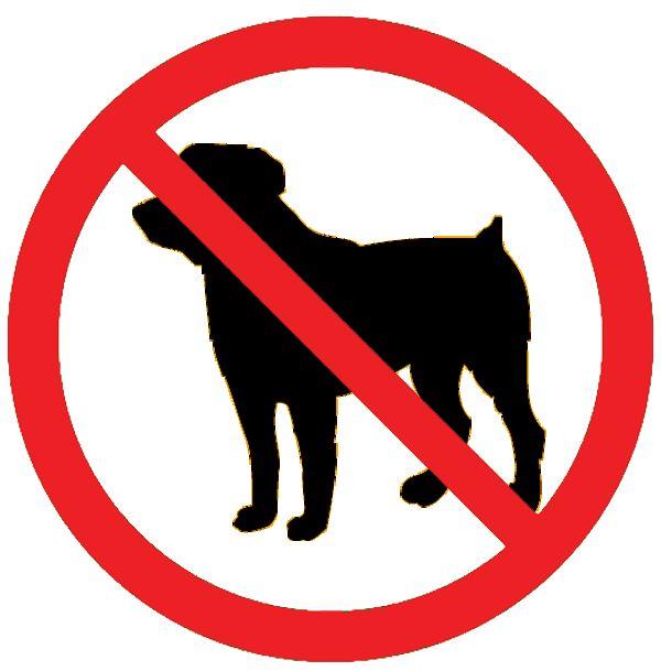 Clipart images of destructive pets.