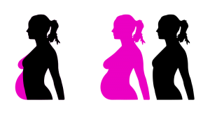 Reproduction Clip Art Download.