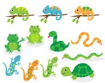 Clipart Reptile Clip Art Snake Clipart Frog Clipart Lizard Clipart.