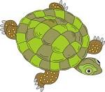 Free Reptile Clipart Clipart.