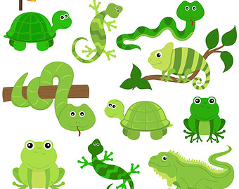 Reptile Clipart & Look At Clip Art Images.