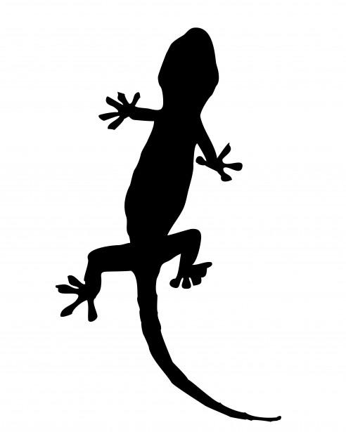 Gecko Silhouette Clipart.