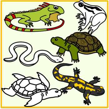Reptiles and Amphibians Clipart (Animals).