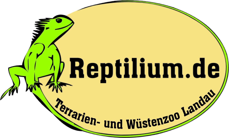 Reptilium Landau.