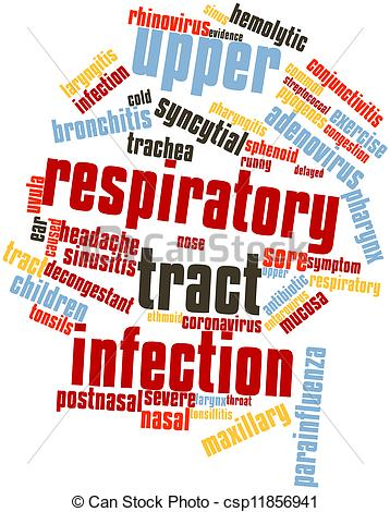 Respiratory tract Stock Illustration Images. 659 Respiratory tract.