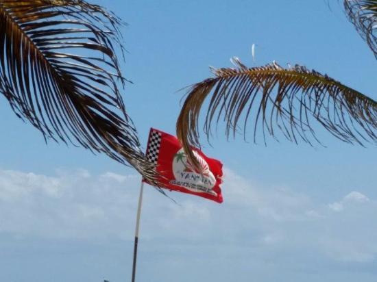 Zoomed in on Restaurant\'s flag logo.