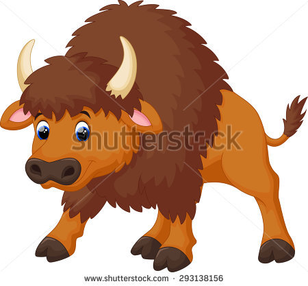 American Bison Stock Images, Royalty.