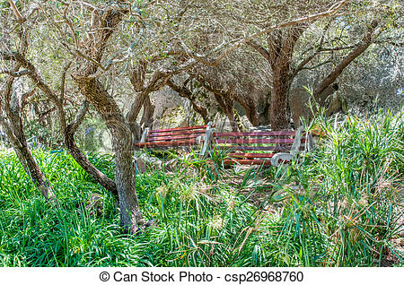 Stock Image of Shady resting spot at the Afrikaans Language.