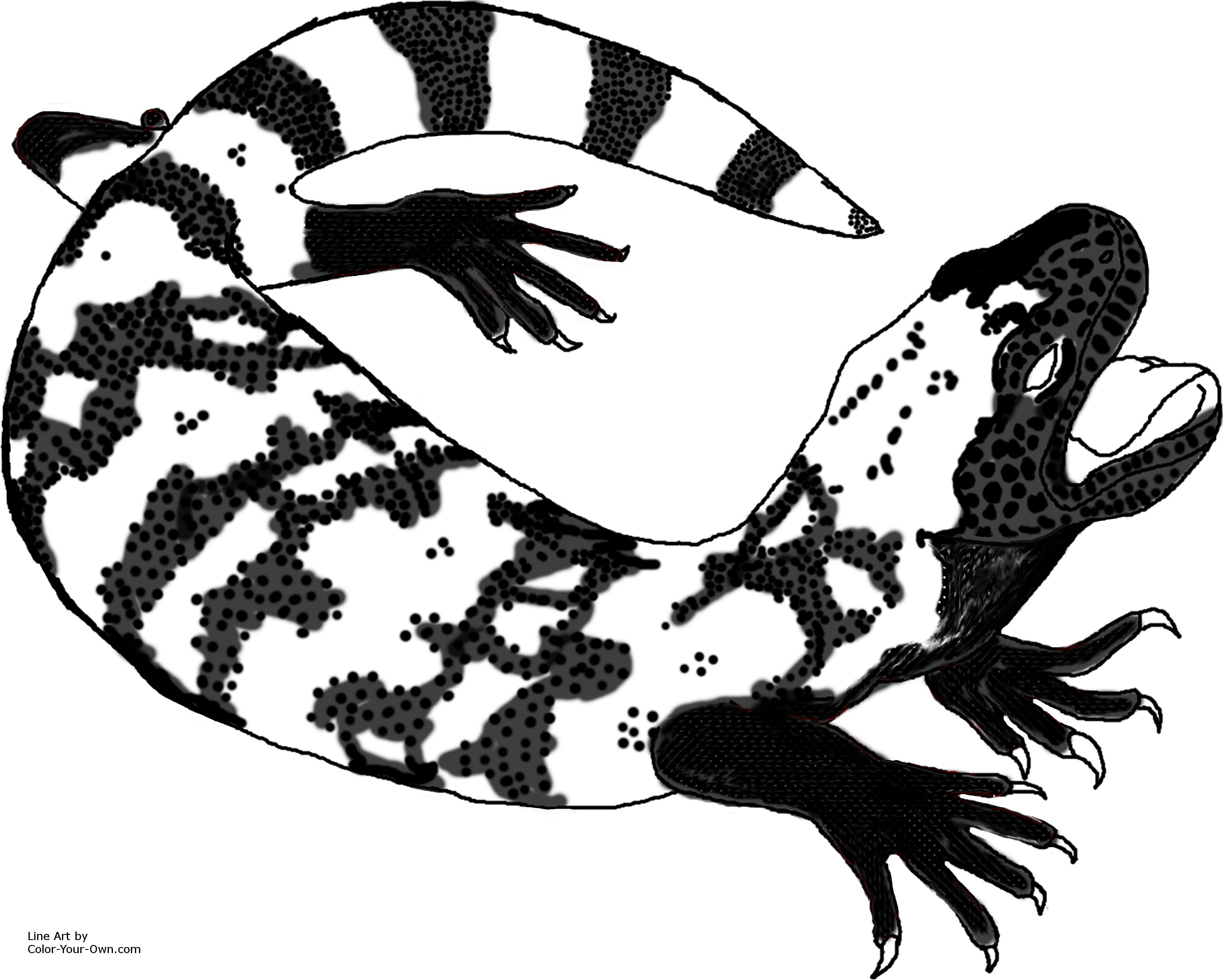 Gila Monster Coloring Page.