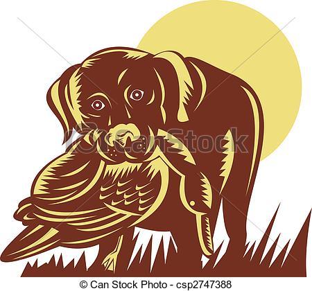Stock Illustration of trained gun dog retrieving a duck.