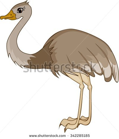 Rhea Bird Stock Images, Royalty.