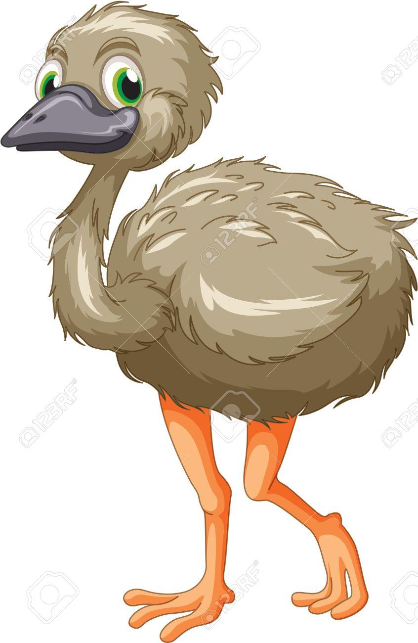 0 emu clipart.