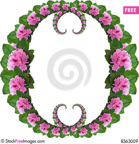 Pink Rhododendron Frame.