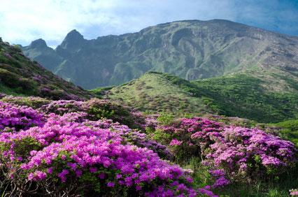 Mount Aso.