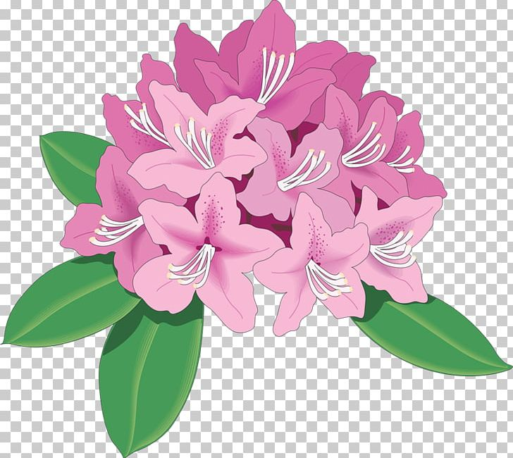 Rhododendron Azalea Drawing PNG, Clipart, Arco De Flores.