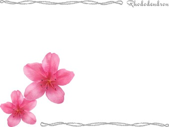 Rhododendron clipart / Free clip art.