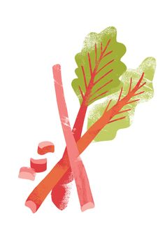 Free Rhubarb Cliparts, Download Free Clip Art, Free Clip Art.