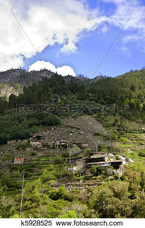 Stock Image of nature and landscapes of the Ribeira Sacra, Orense.