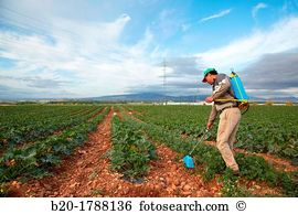 Fumigation Stock Photo Images. 918 fumigation royalty free images.