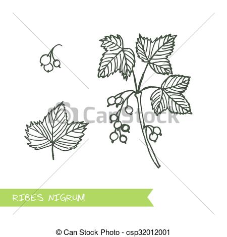 Vector Clipart of Handdrawn Illustration.